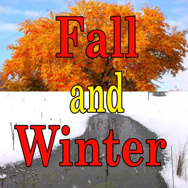 Fall and Winter: Net Covering, Pond Heaters/Air Pumps