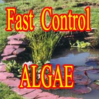 Products for FAST Algae Control