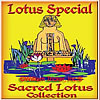 Cost Savings Lotus Collections