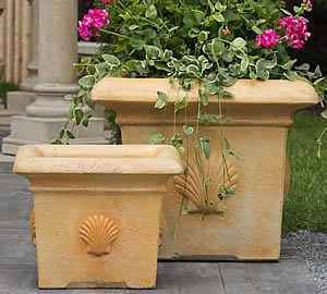 Large Shell Planter
