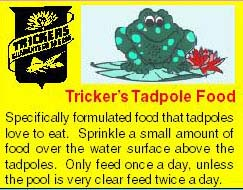 Tadpole Food - 45 Grams