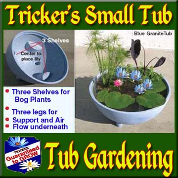 Tricker's Small Tub with or without Plants