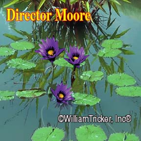 Director George T. Moore Water Lily