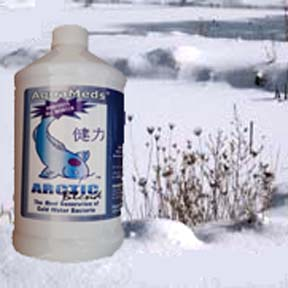 Arctic Blend - Winter Water Quality