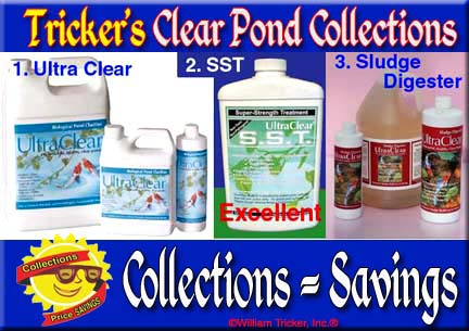 140 Clear Pond Collections 1-2: Ultra Clear/Sludge Digester/SST