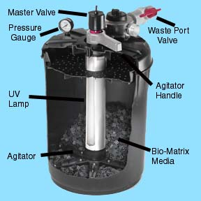 Ponds up to 1000 Gallons: Proline Pressurized Filter System 1000 with UV